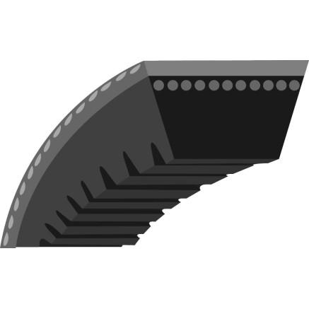 Correa trapezoidal MTD (TS265811)