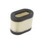 Filtro de aire para TECUMSEH 36745