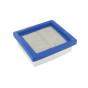 Filtro de aire para TECUMSEH 36046 -C/O TW