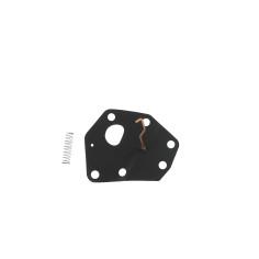 Membranas BRIGGS 1429 (F1861)