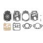 Kit reparación carburador TILL (FR4911)