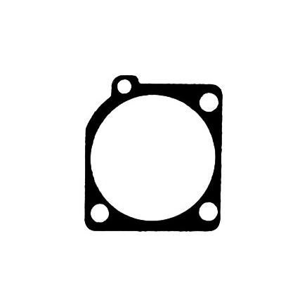 Membrana ZAMA 0016014-C1S
