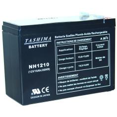 DJW1210 Batería 12 V-10 Ah