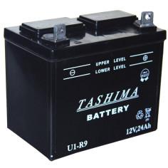 Batería 12 V-24 Ah