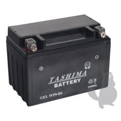 Batería 12 V-8 Ah