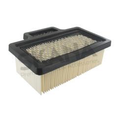 4100138 Conjunto filtro de aire